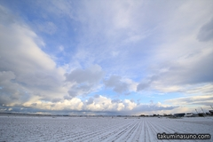 Snowy Paddy Fields of Niigata Welcome Blue Sky