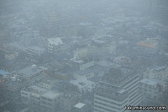Record of Driving Snow in Tokyo 2015