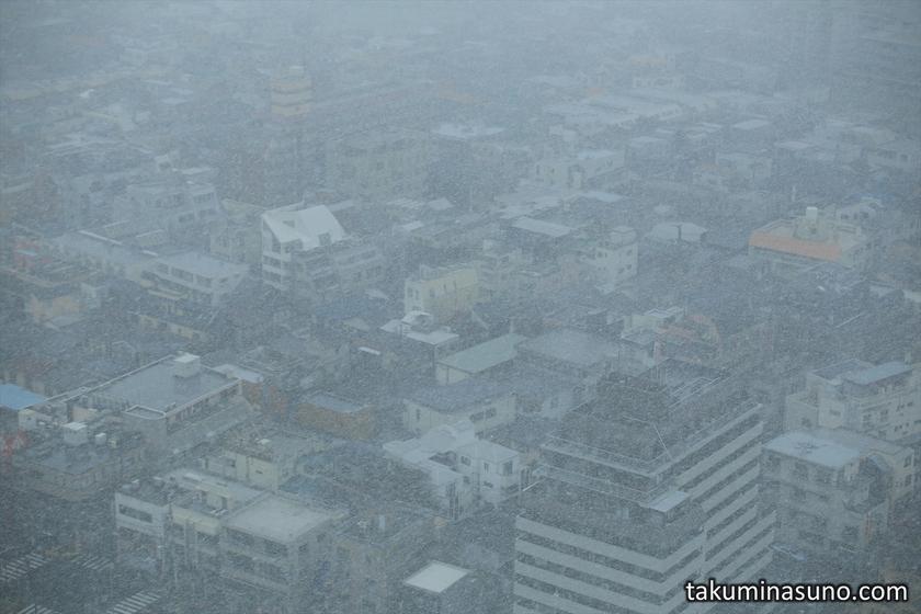 Snowy Day in Shinjuku