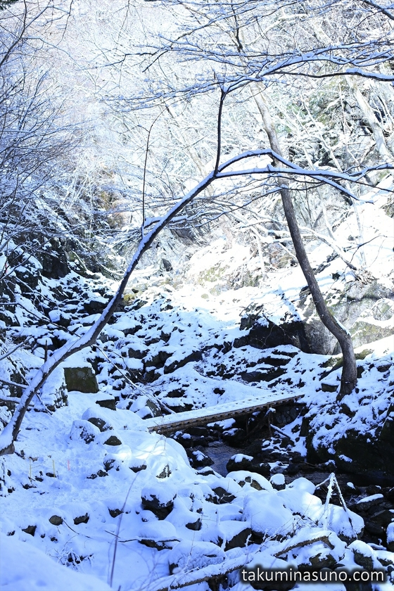 Snowy Riverside of Okutama