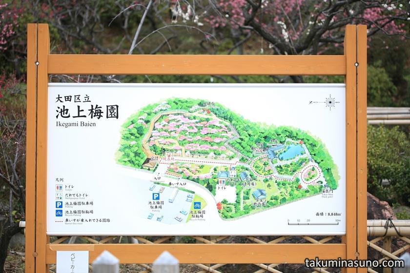 Guide of Ikegami Baien Plum Garden