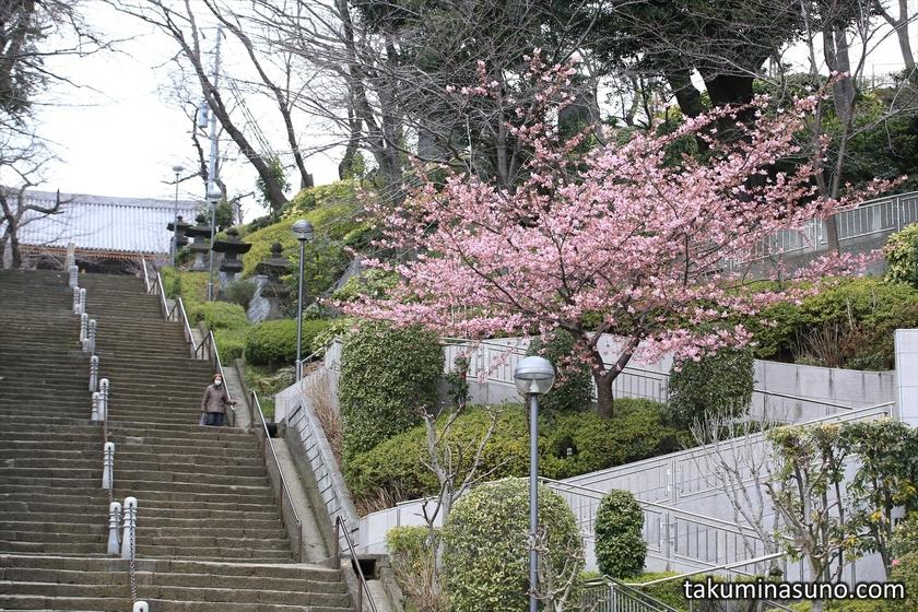 Stairs at Ikegami Honmonji Temple