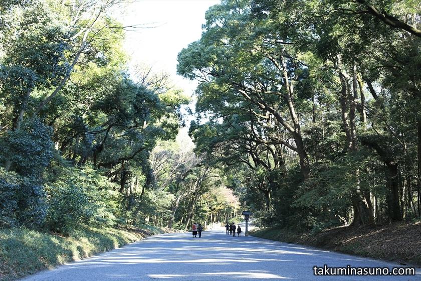 Street of Meiji Jingu Shrine