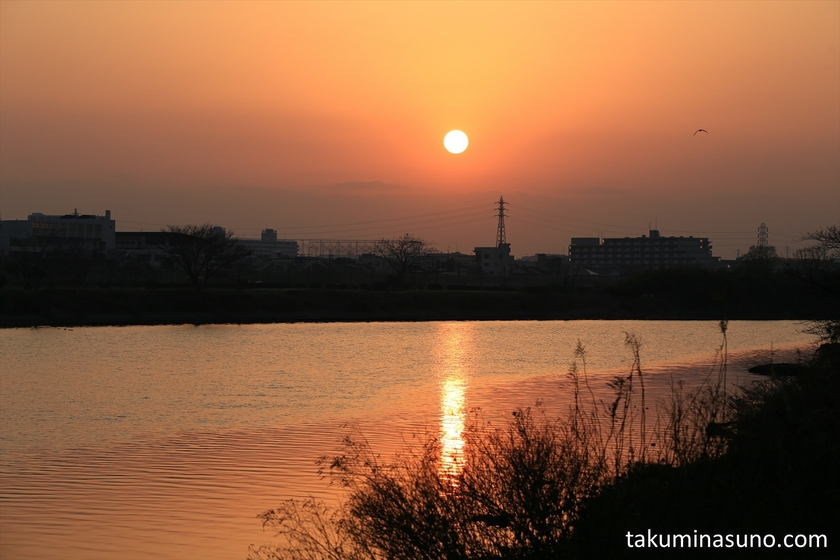 Sunset from Riverside of Tama River