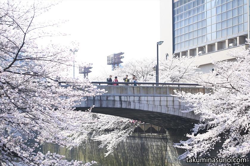 Bridge over Megro River