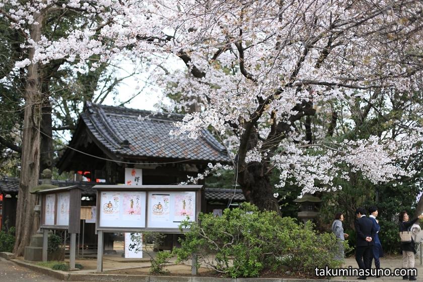 Todoroki Fudouson Temple