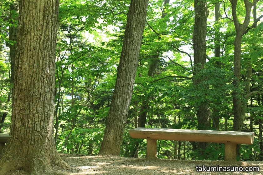 Comfortable Wooden Chair at Mt Takao