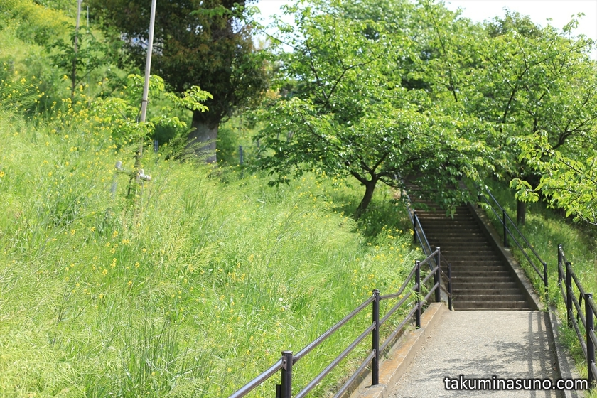 Entrance to Mt Matsuda
