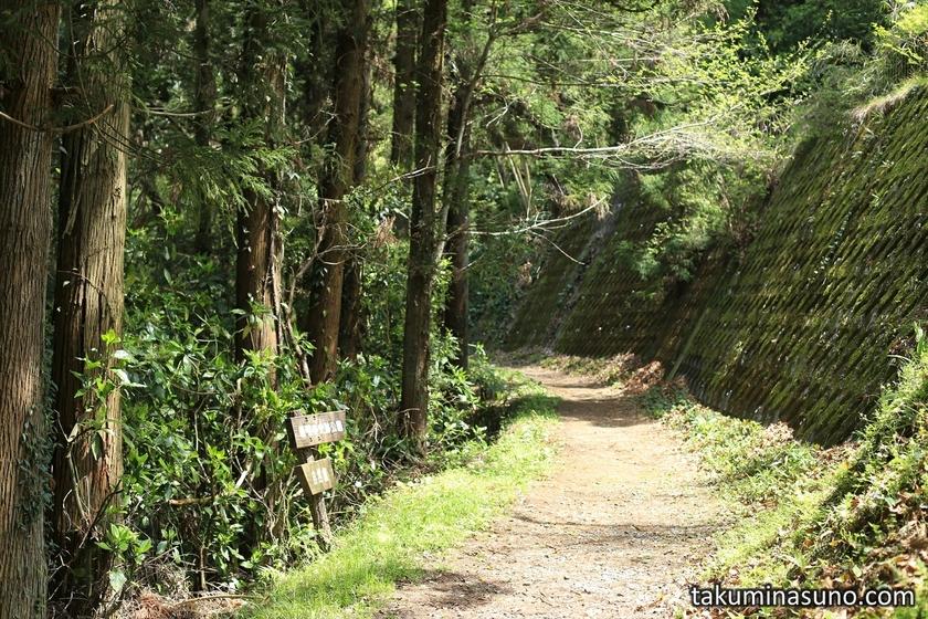 Mountainous Path at Mt Matsuda