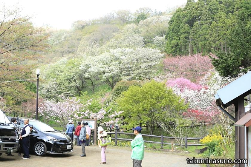 Saimyoji Temple Historic Park