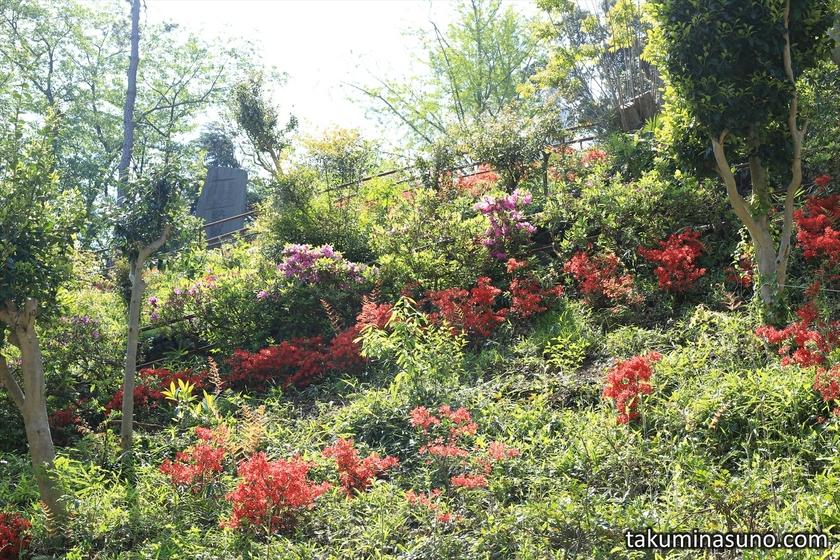 Steep Slope at Sojiji Temple