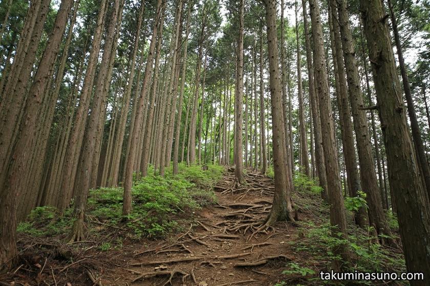 Mt Otsuka