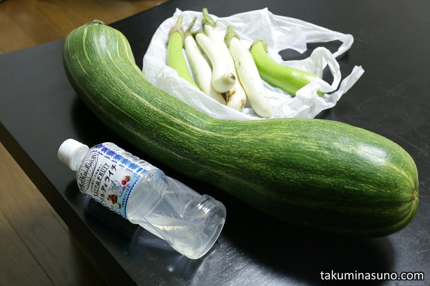 Trumpet Zucchini from Kanta Village