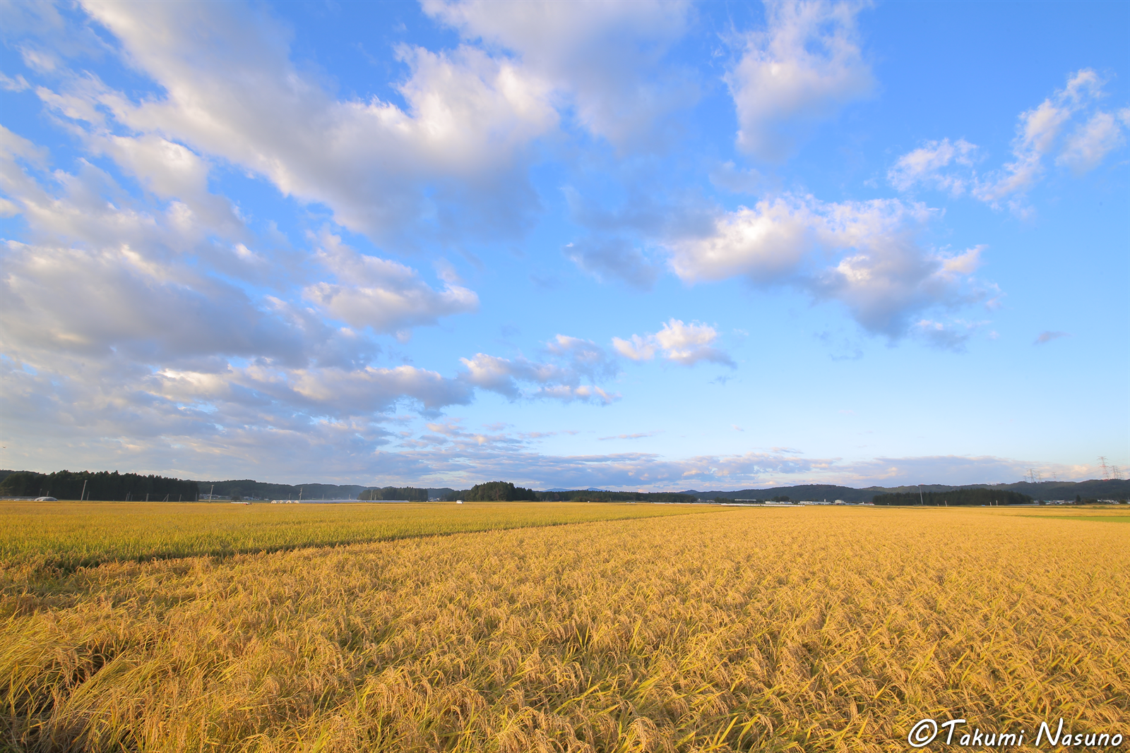 Blue Sky and Paddy Fields at Tanagura Town
