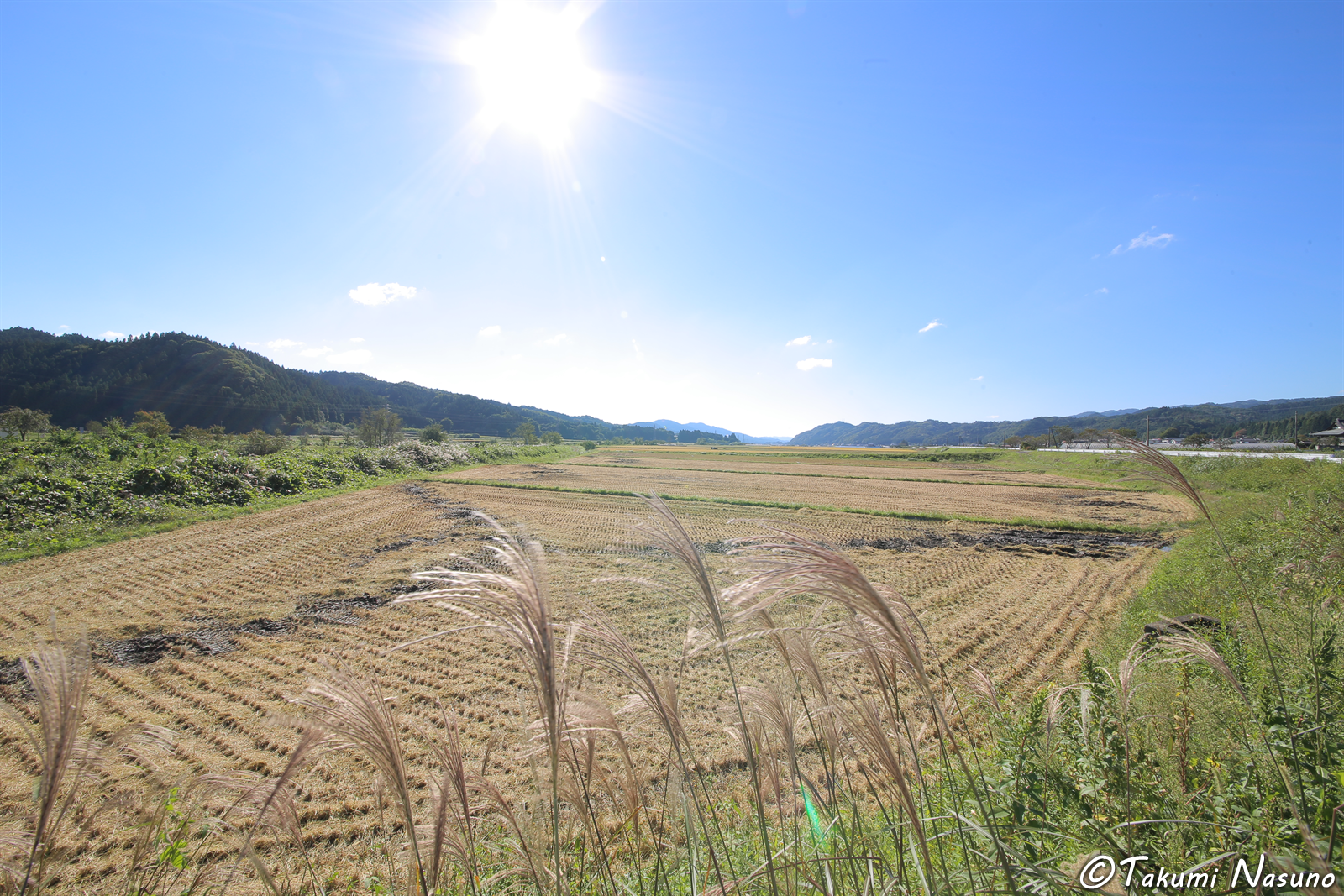 Paddy Fields of Tanagura Town after Haresting