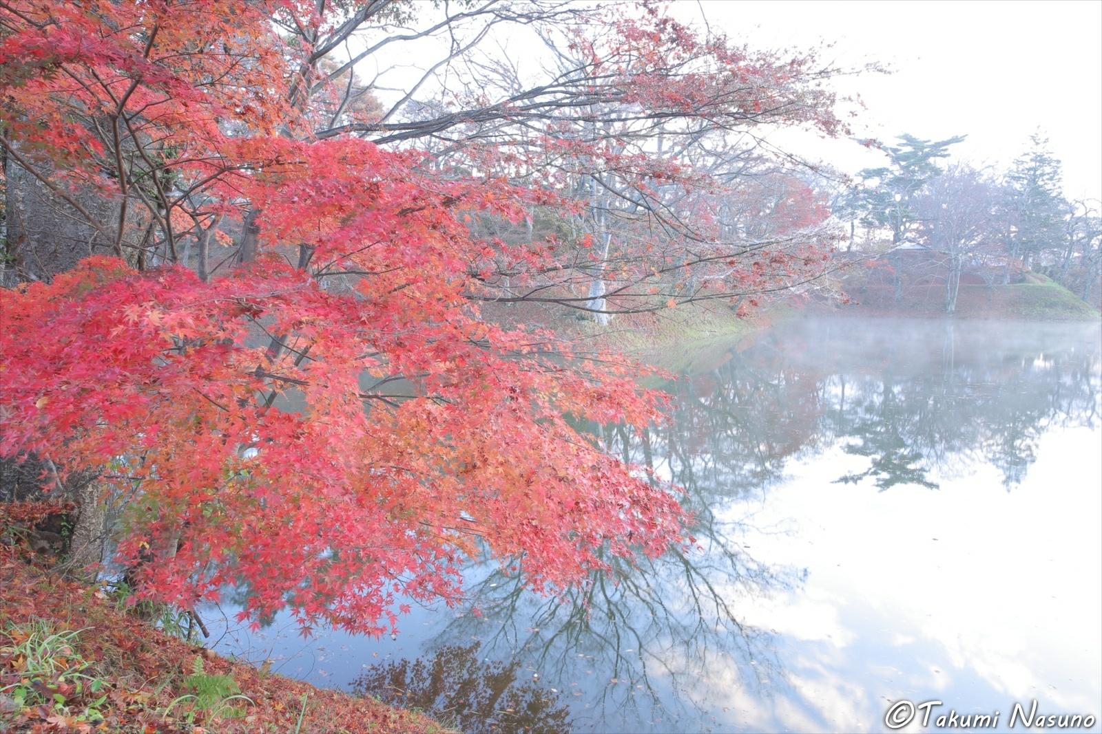Autumn Colors and Site of Tanagura Castle