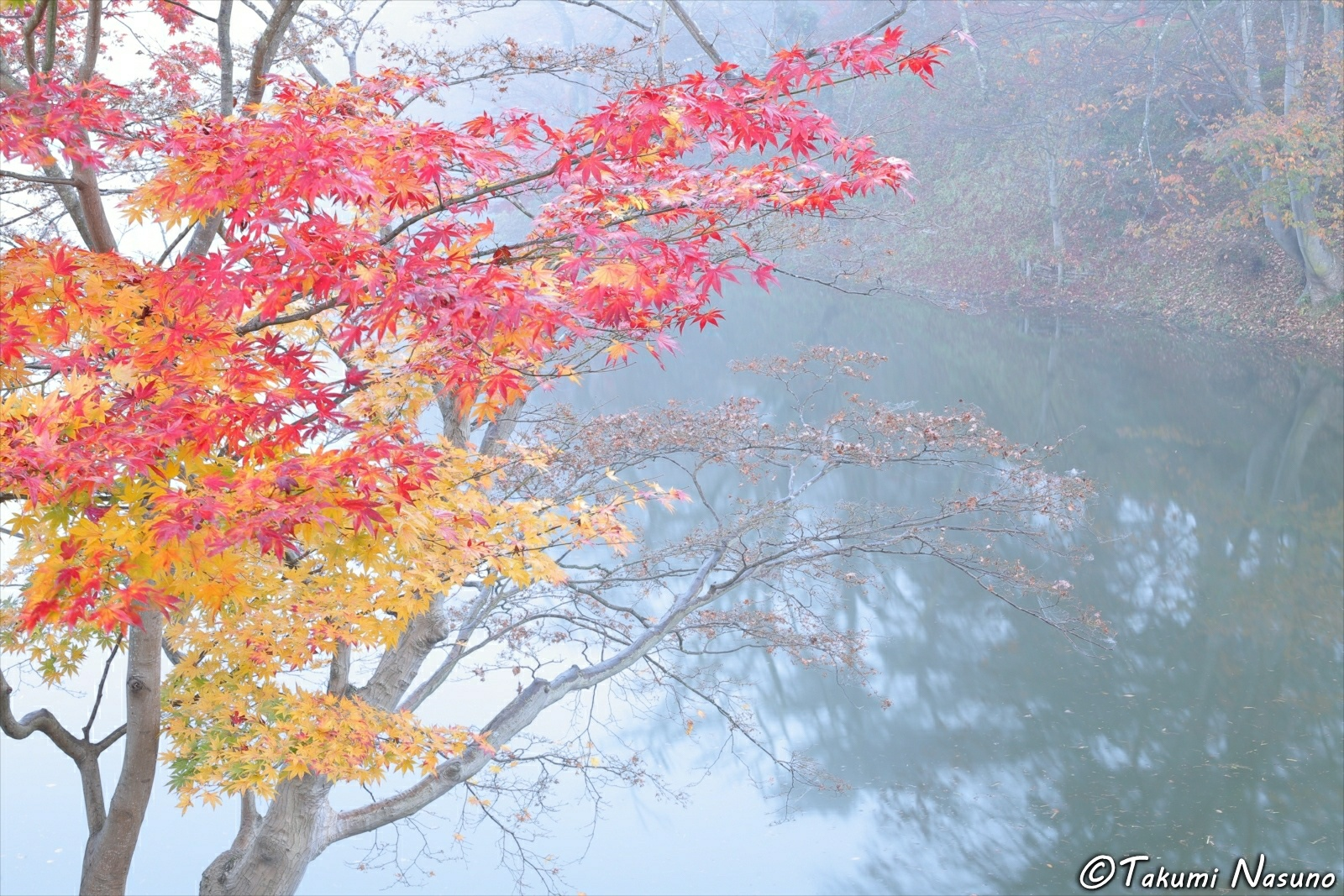 Autumn Colors around the Site of Tanagura Castle