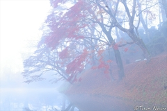 Autumn Landscapes of Tanagura Town should be More Popular as a Town of Morning Mist