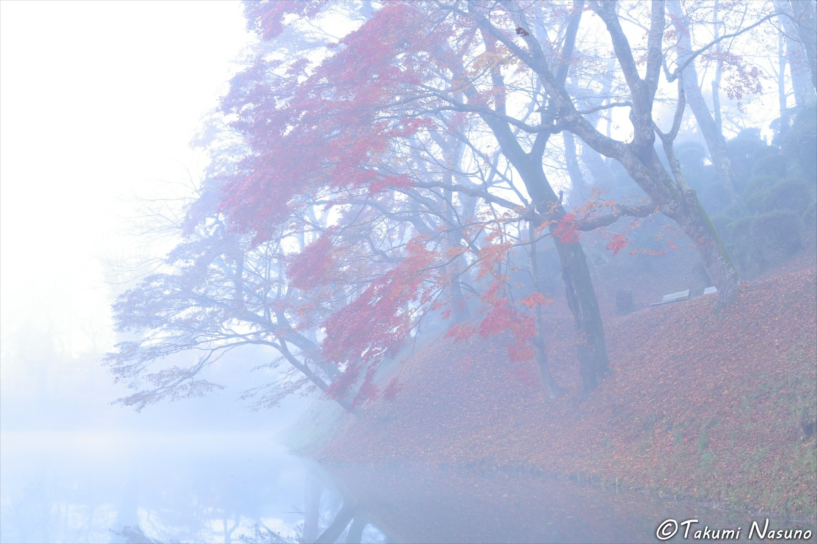 Autumn Colors in the Mist of Tanagura Town