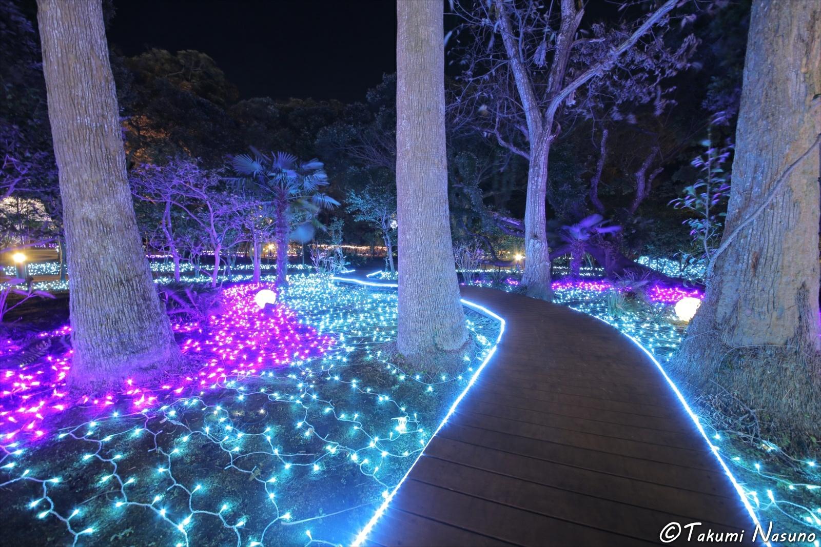 Illumination Road of Enoshima Island