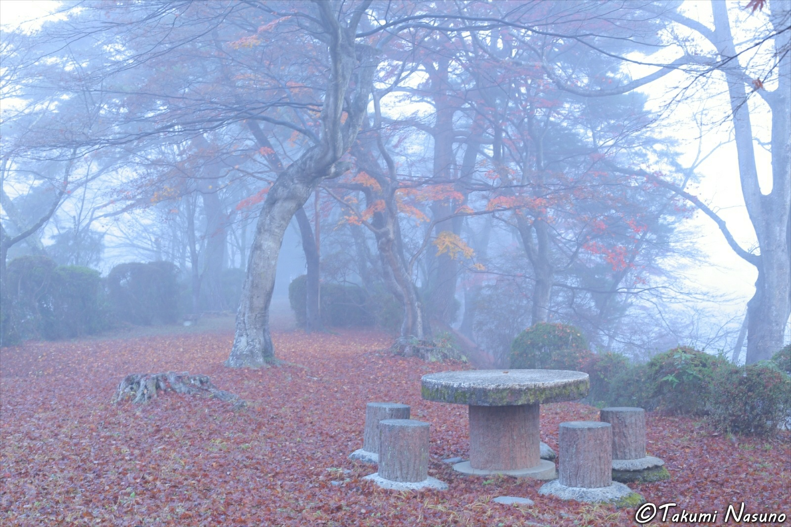 Site of Tanagura Castle with Autumn Colors in the Mist