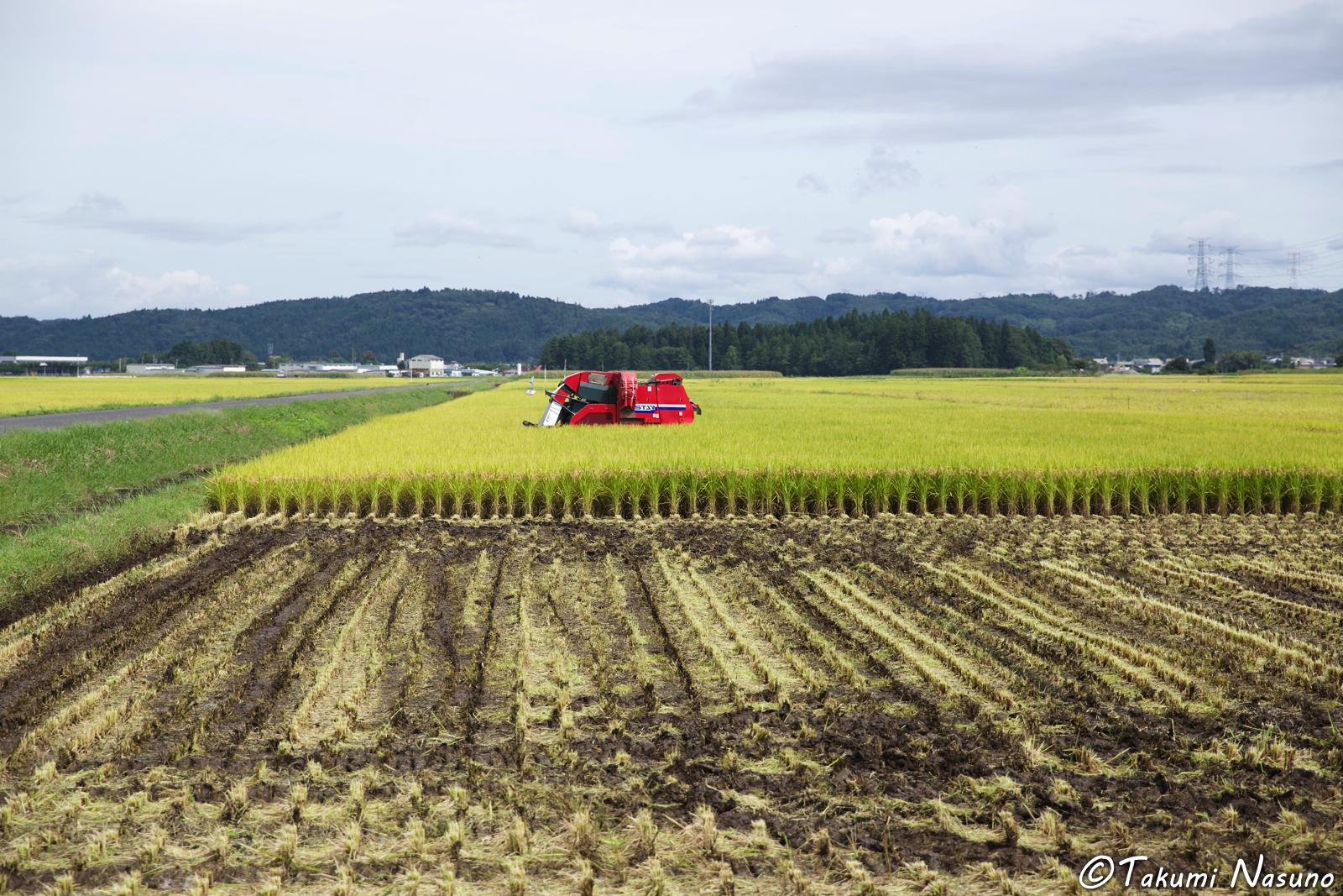 combine-harvester-of-tanagura-town