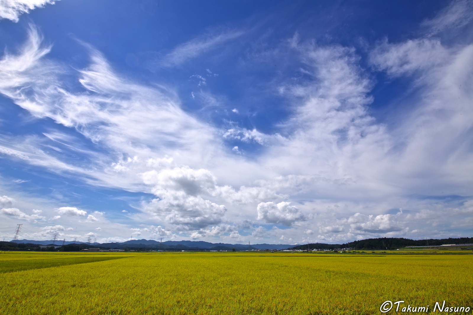 paddy-fields-from-yashirogawa-district-of-tanagura-town-in-september