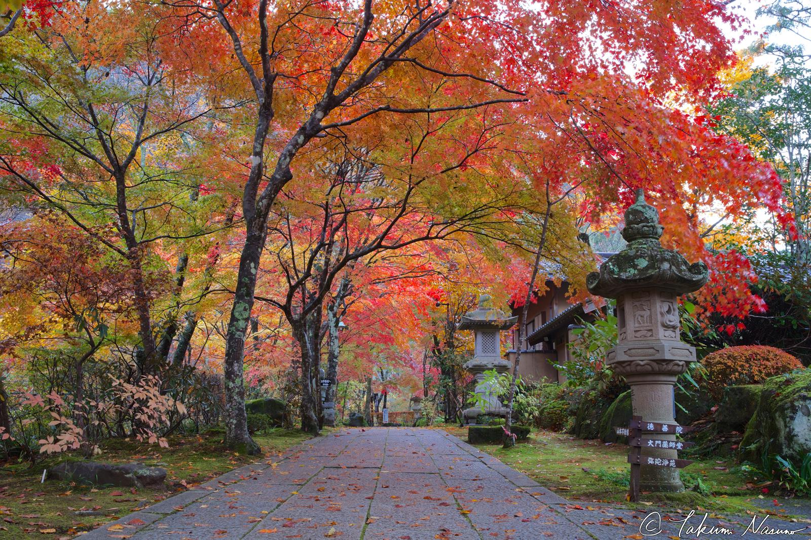 autumn-colors-of-yamamoto-fudouson-temple
