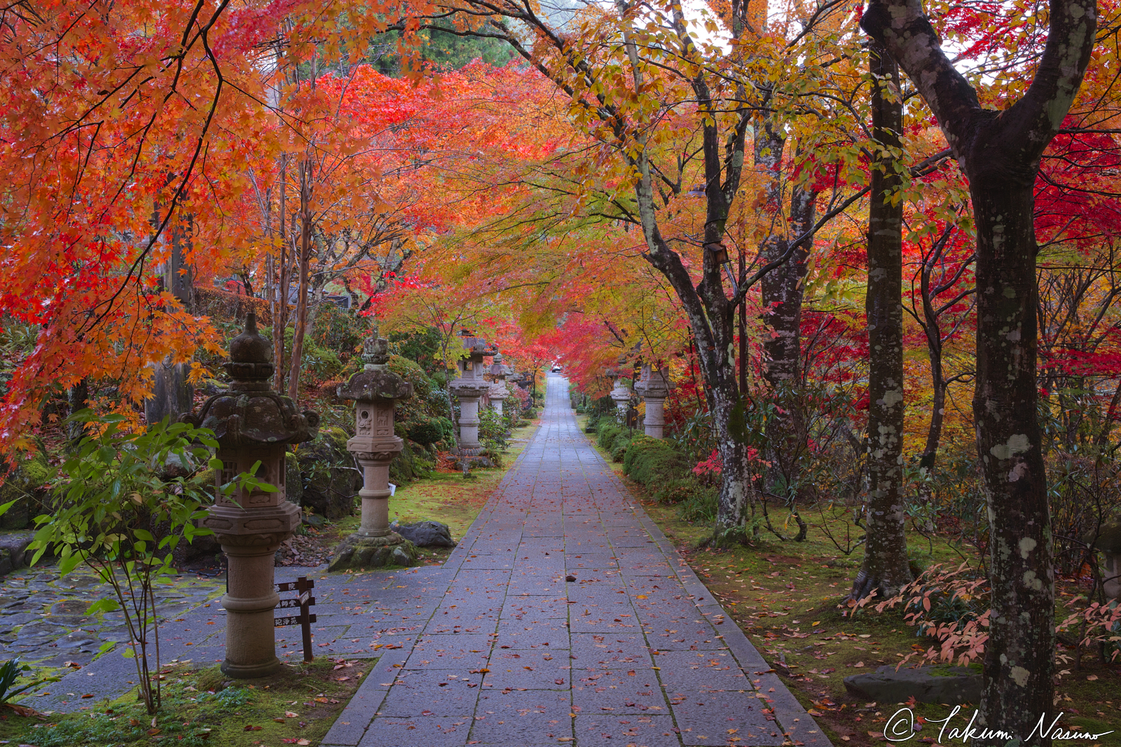 autumn-colors-of-yamamoto-fudouson-temple2