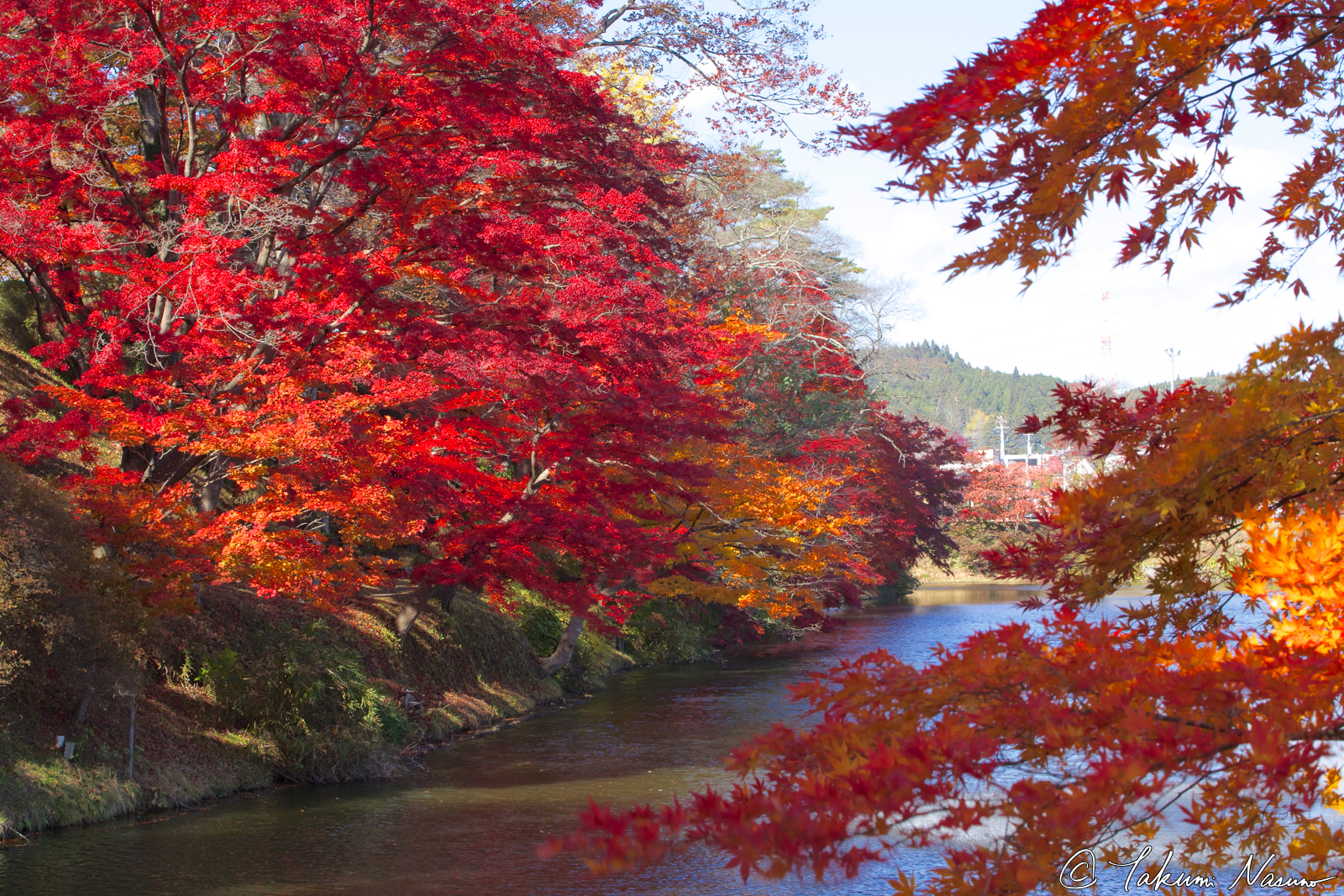 autumn-colorful-leaves-of-site-of-tanagura-castle