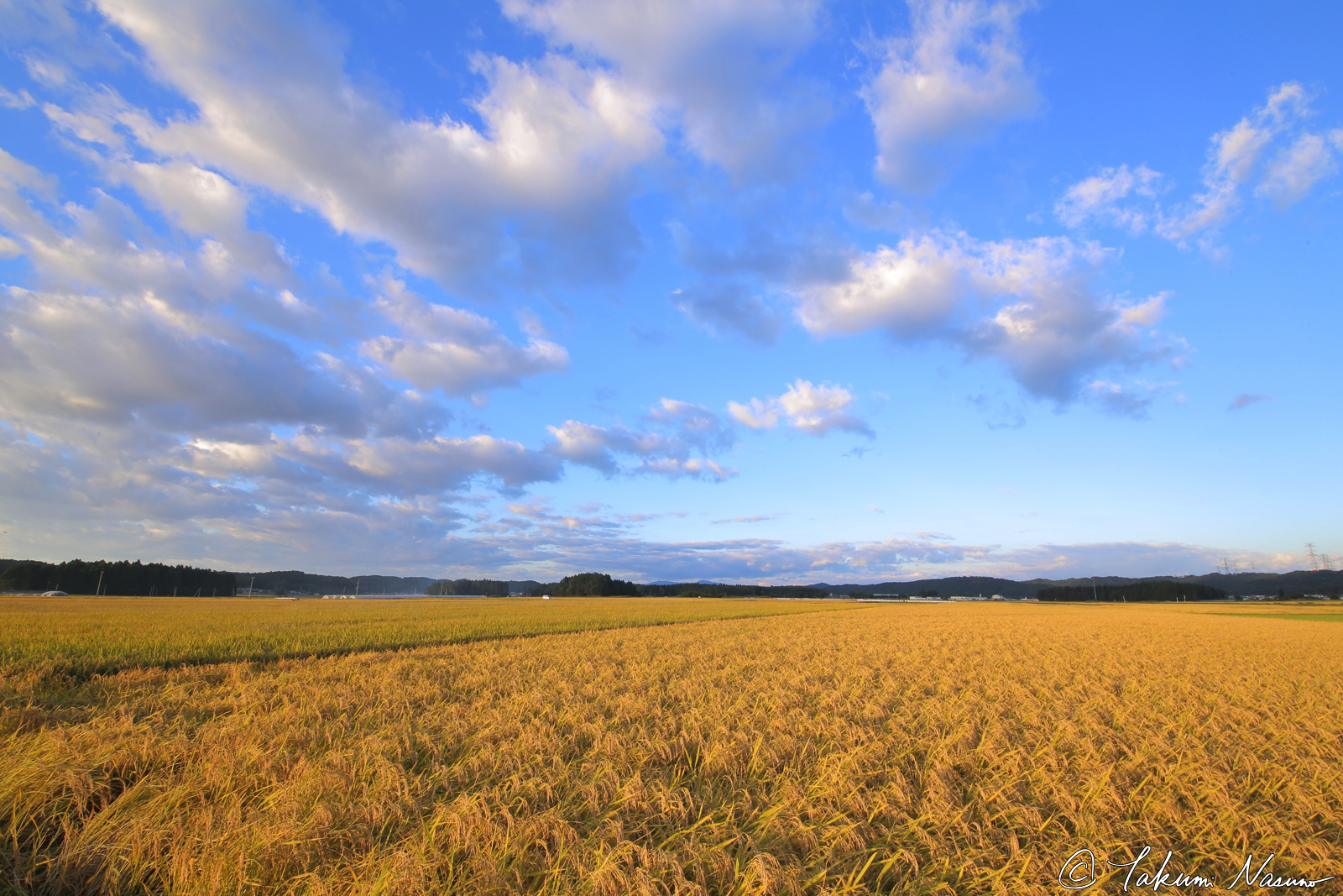 blue-sky-and-paddy-fields-at-tanagura-town