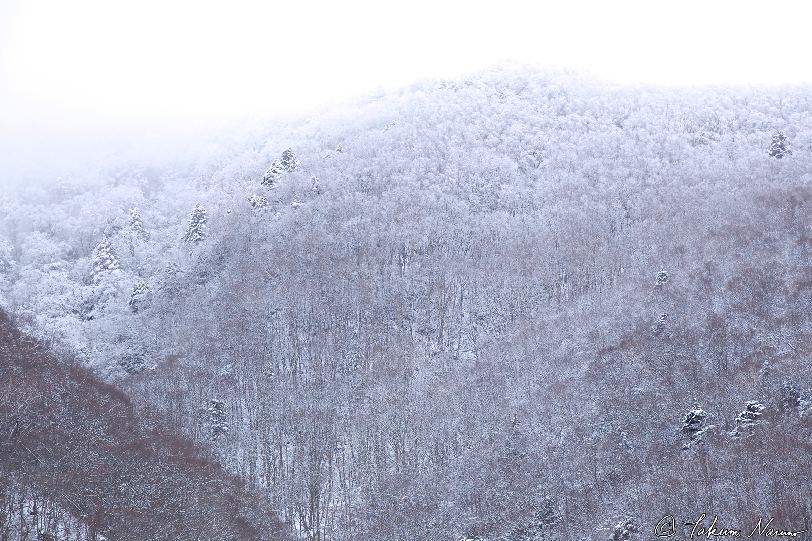snowy-mountains-of-takayama-village
