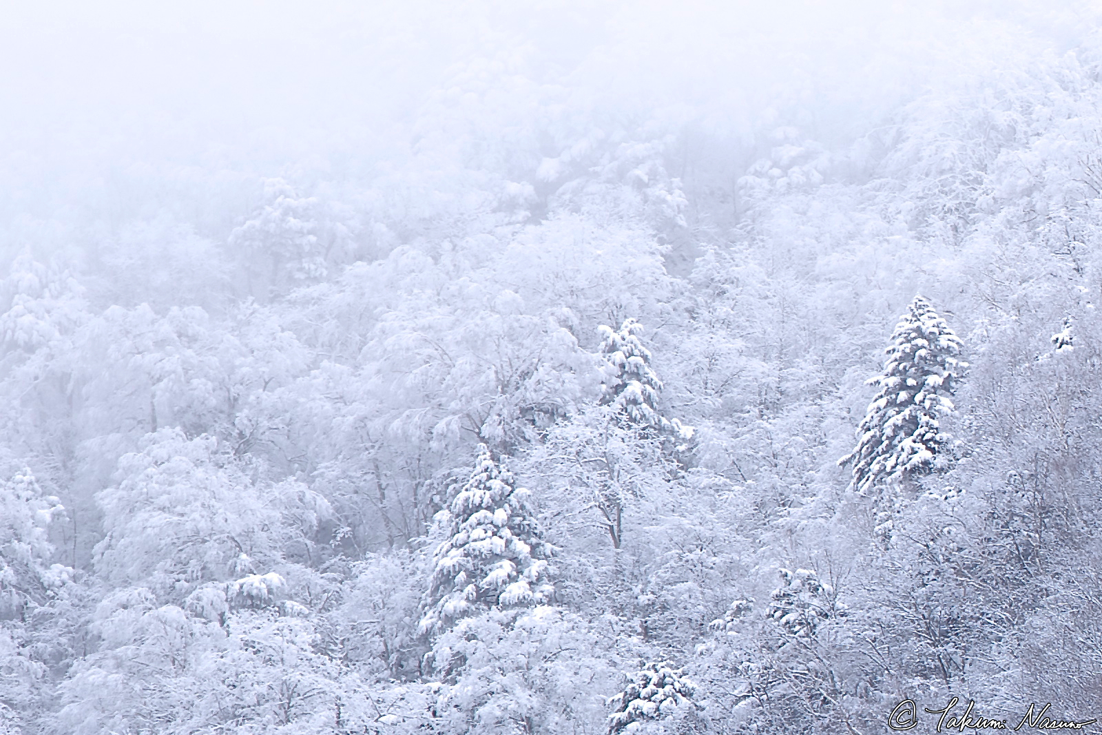 snowy-mountains-of-takayama-village_cropped-again