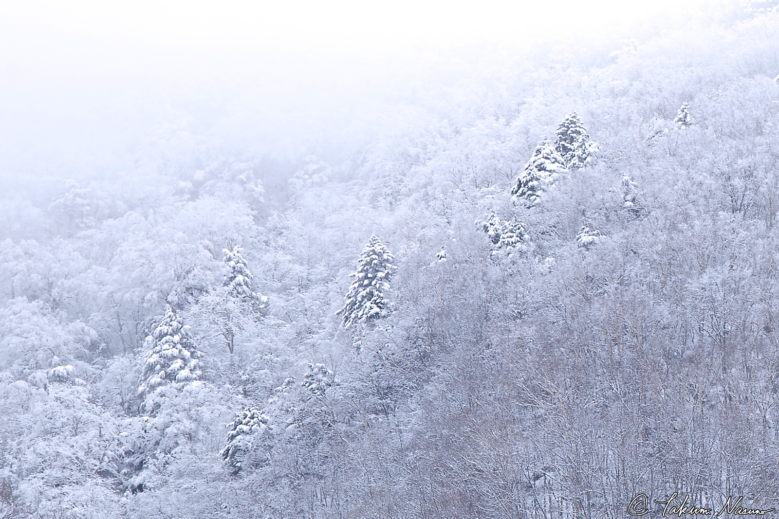 snowy-mountains-of-takayama-village_cropped