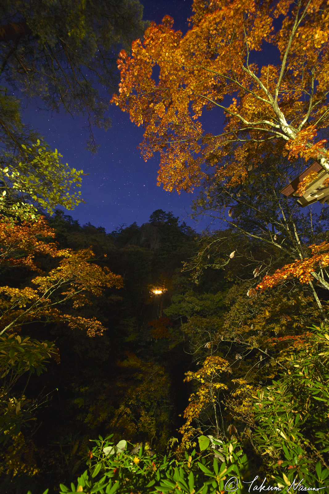 starscapes-and-autumn-colors