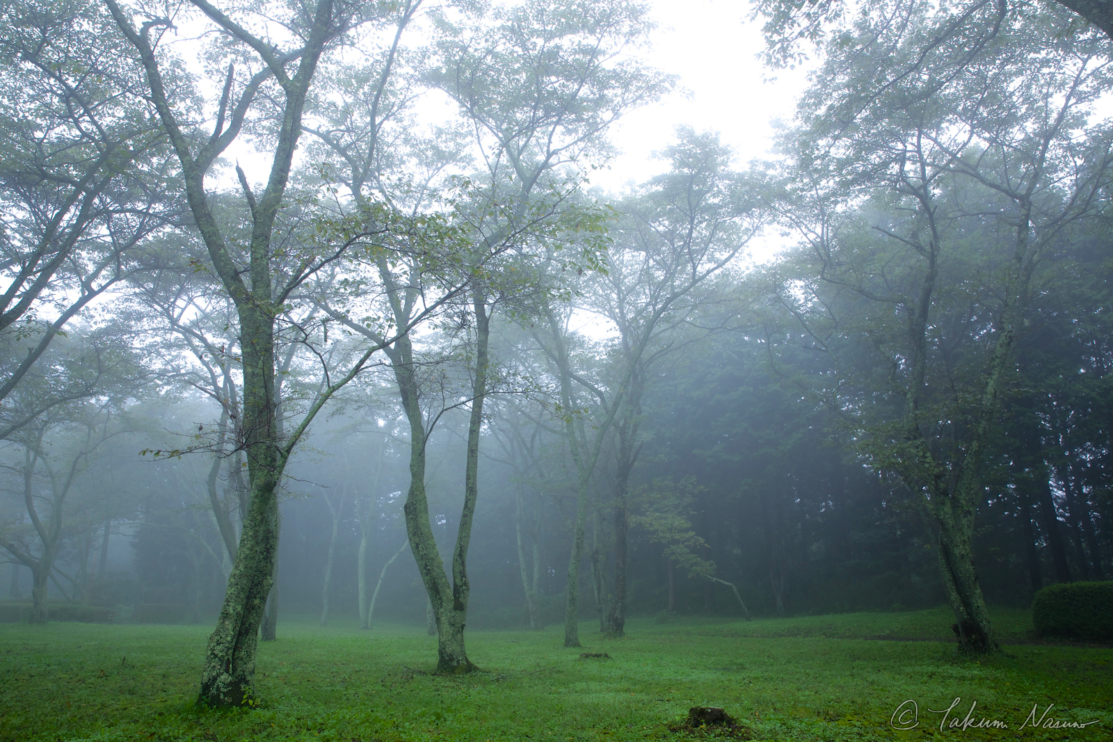 Tanagura Photo Contenst - Morning mist and Silence