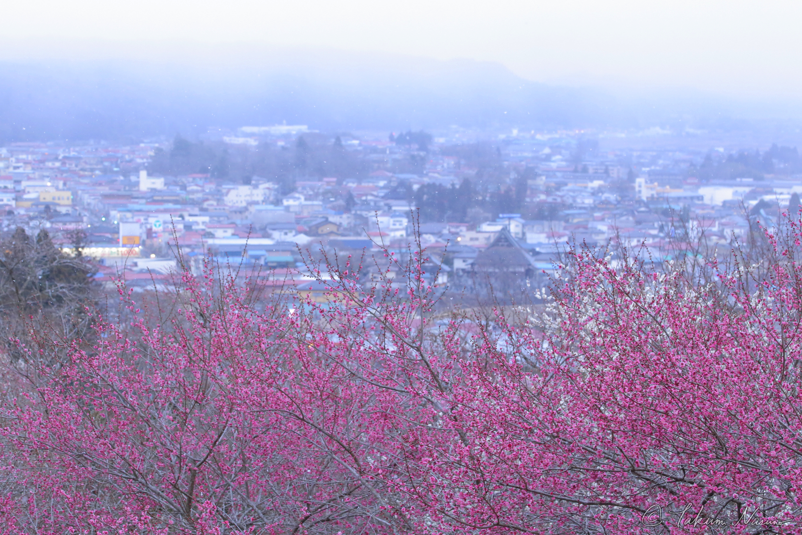 Tanagura Photo Contenst - Snowy Tanagura Town with Ume Blossom's Flavor