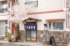 Review of Sakura trees of Tanagura Town with my photography to welcome the Sakura season this year